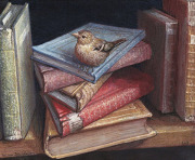 Ton van Steenbergen
