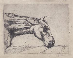 Gretha Pieck, ets paardje ca. 1917