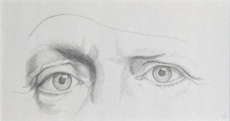 Studie ogen
