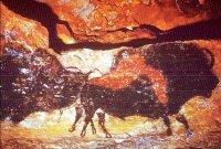 Oeros op grotwand in Lascaux